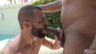 bearded daddy takes a big black cock in outdoor fuck