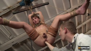 blond twink suspended in rope sling gets ass fisted