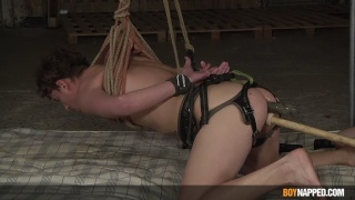 Restrained in Rope Sling, Twink Gets Fucked by Dildo Machine