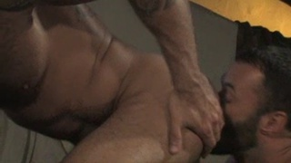 hairy ass rimming and butt fucking