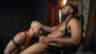 Dicks videot