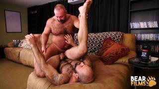 bearded muscle bear takes a hefty daddy's hard cock