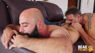 hairy man gets his ass eaten then fucked by bearded top