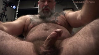 hairy & bearded daddy strokes his fat dick & unloads his nuts