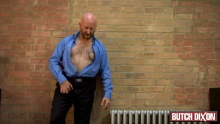 True bear strips out of suit