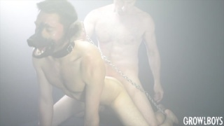 guy in puppy mask gets trained on taking a hard fuck