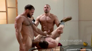 Assured, White hairy hunks naked personal