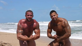 naked muscle hunks flexing on the beach