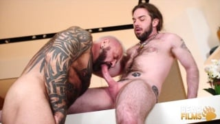 hairy muscle bear fucks furball with pony tail