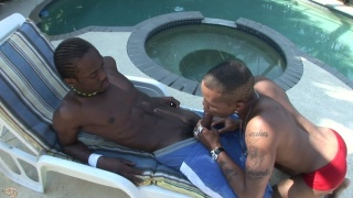 horny guys sucking & fucking by the pool