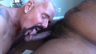 silver daddy sucks a young black man's big cock