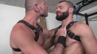sexy bearded men in harnesses fuck each other