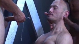 Cum and piss hole gets filled