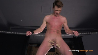 slave boy's nuts are clipped with clothes pegs