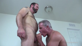 silver daddy and hairy muscle bear fuck around