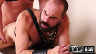 furry leather daddy in harness & blue socks gets fucked