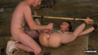 twinks legs tied to bamboo & hoisted over his head