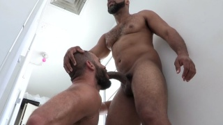 Bearded Daddy Blowing Hung Black Man in Toilet