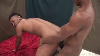 Black  Dudes Fuck Raw
