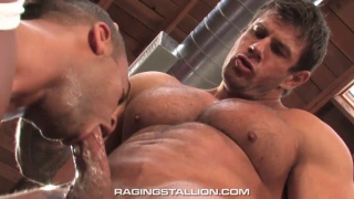 Blowing Zeb Atlas