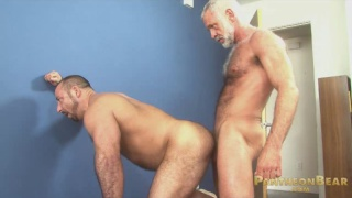 Silver Daddy Fucks Muscle Bear