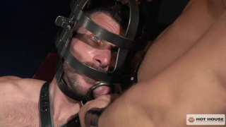 Man in Caged Mask Servicing