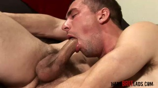 Hairy Men Swapping Blowjobs