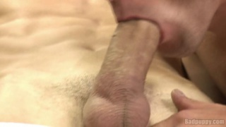 Open Wide for My Fat Cock