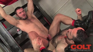 Jessy Ares Riding Adam Champ's Cock