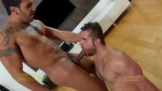 Suck My Huge Dick, Cocksucker!