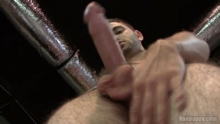 Hairy-Legged Stuf Jerking Beautiful Cock