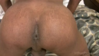 Big Phat Black Ass to Fuck