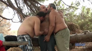 3 Big Bears Fucking in the Spanish Woods