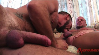 bald muscle daddy fucking hairy bottom's ass