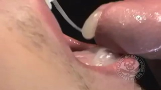 sucking dick and swallowing loads
