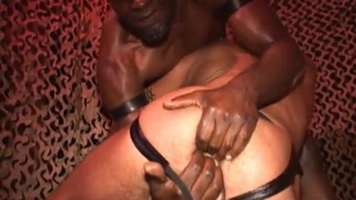 white bottom craving huge black cock