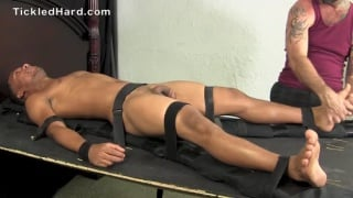 tickled tied and used
