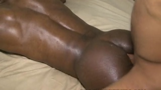 hung top breeding virgin black hole