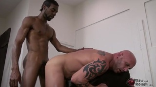 chase coxxx breeding white bottom ass