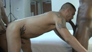 Sage Daniels takes jerry stearns huge black dick
