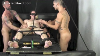cassidy gets tickled by six hands