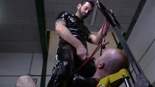 extreme dog training session