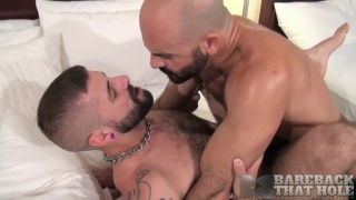 bearded sex pigs fuck in hotel room raw