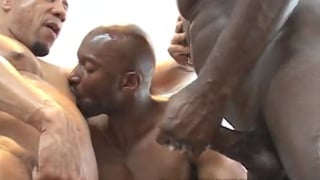 2 black tops bareback fucking a black bottom