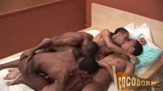 pile of horny black guys on a bed