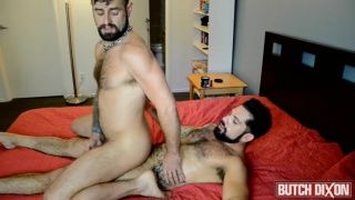 solid hairy hunk slams bearded bottom's ass