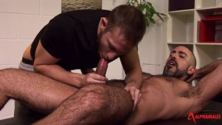 italian top fucks bearded bottom on massage table