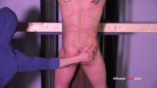 roped to the wall, bryan cole gets whipped