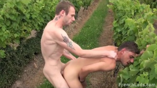 guys fucking in the vineyard