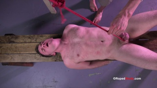 doug shoots in load from his cock bound with rope